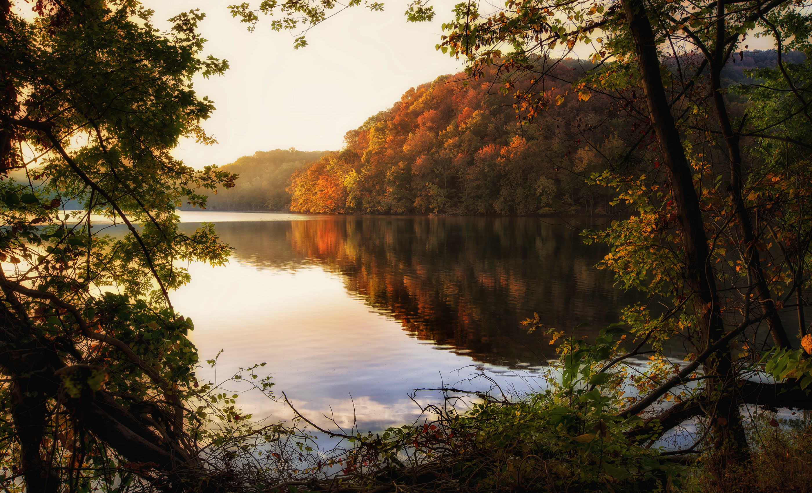 Autumn at Radnor Lake