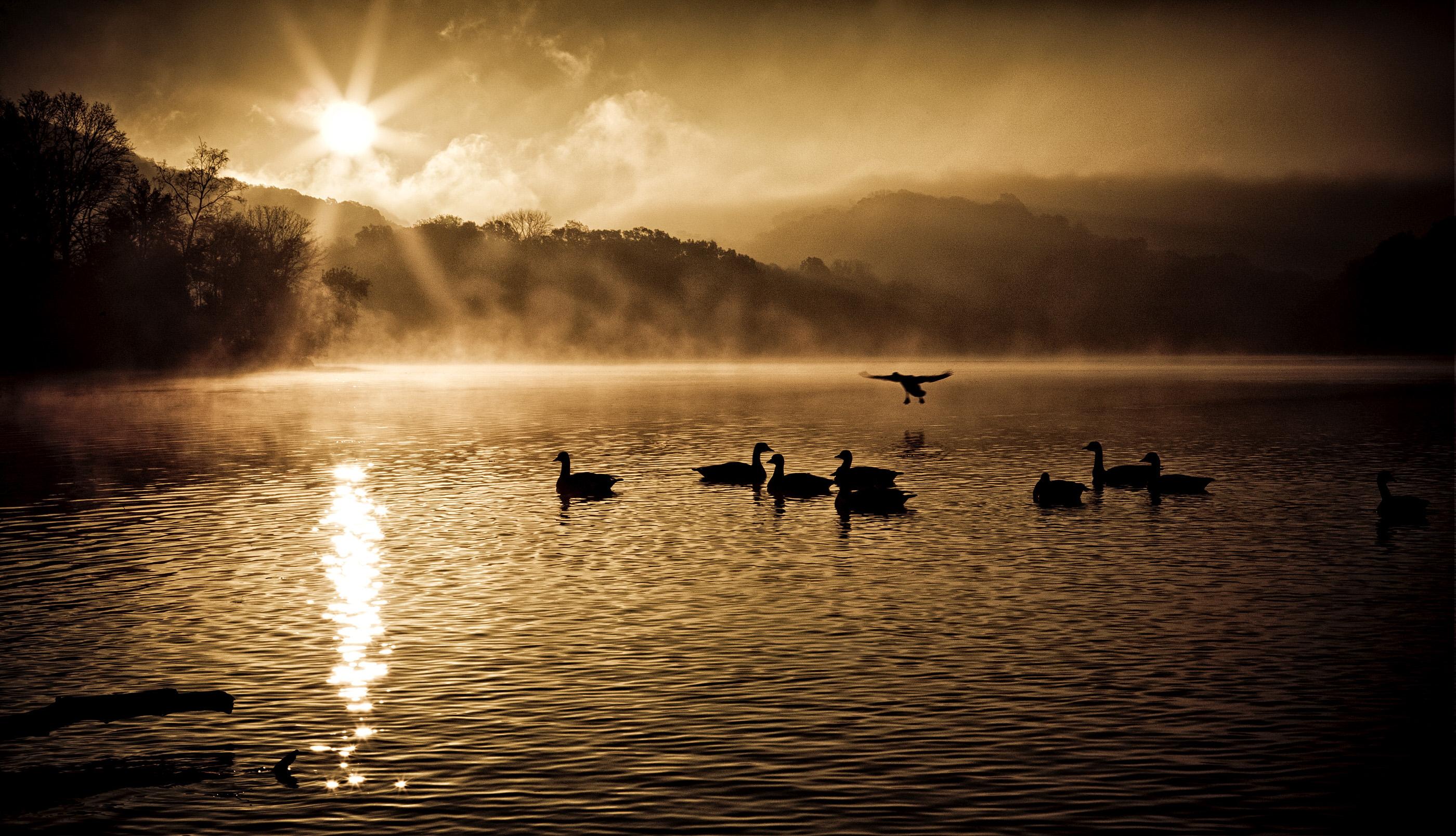 Radnor Lake Nov 2011