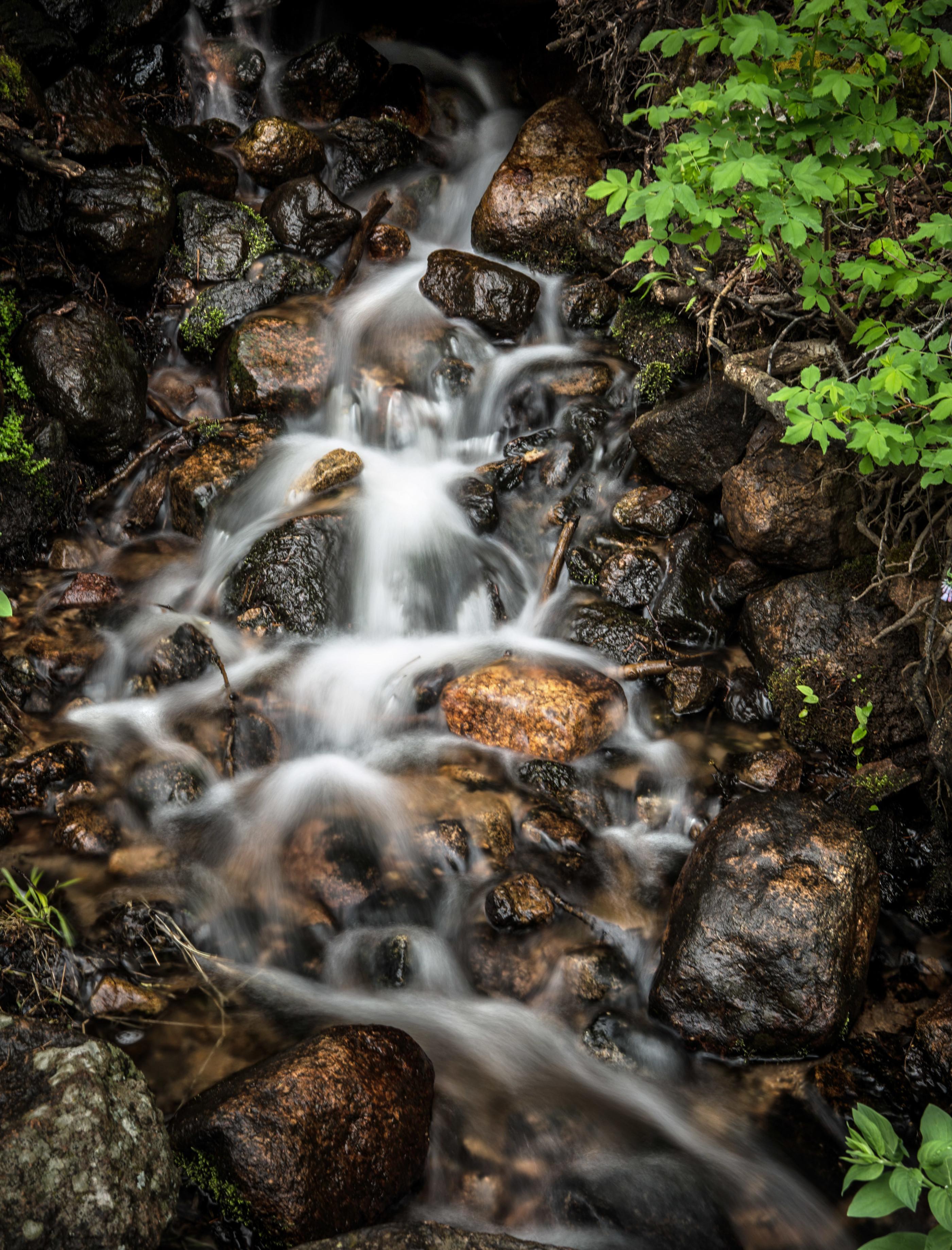 Fern falls trail
