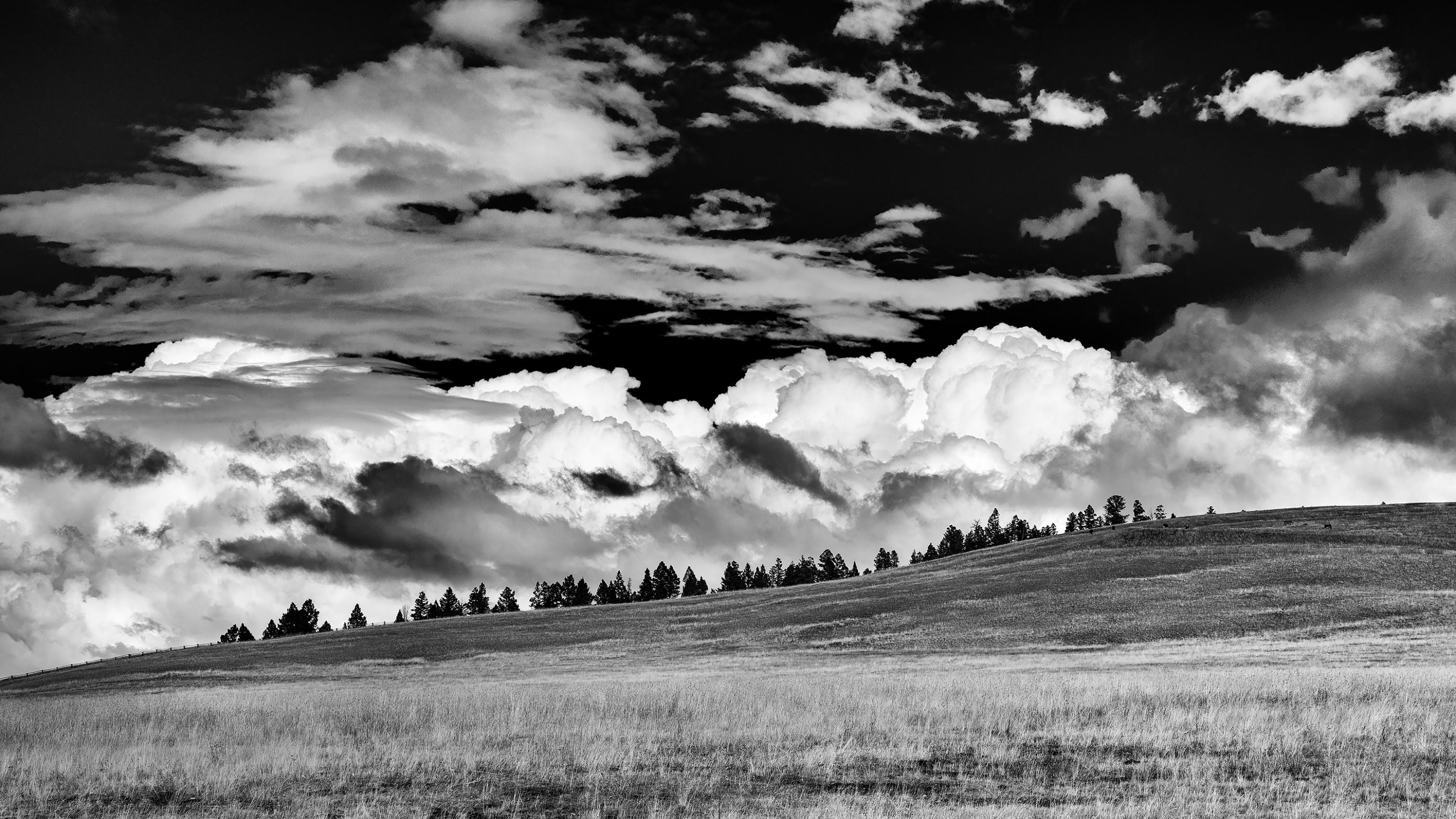 montana-bnw-sky-ash-newell